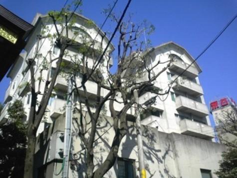 AD・HOMES 建物画像3