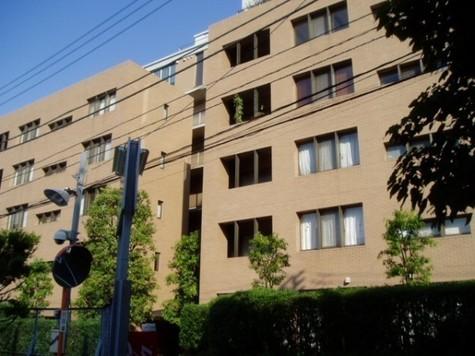 マナハウス四谷 建物画像3