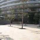エントランス前広場