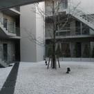 学芸大学 10分マンション 建物画像4
