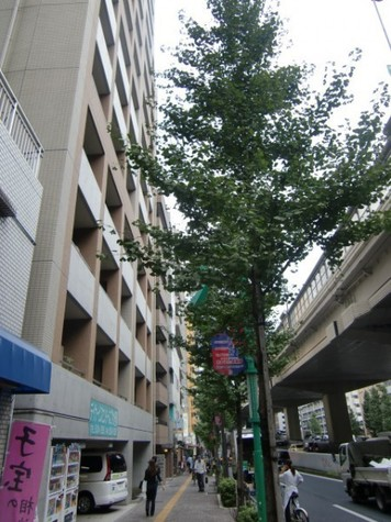 日神デュオステージ笹塚西館 建物画像4