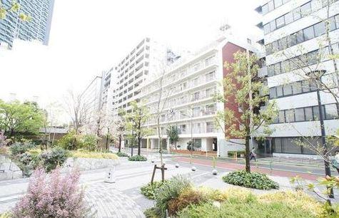 田町ダイヤハイツ 建物画像4