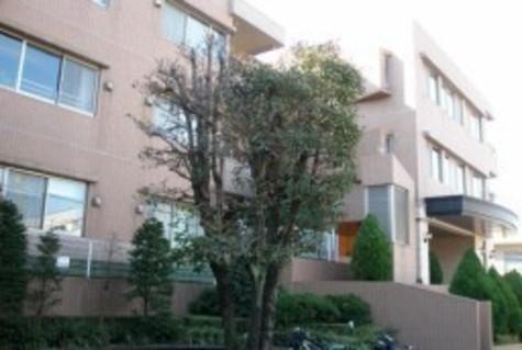 パークハウス代々木上原 建物画像4