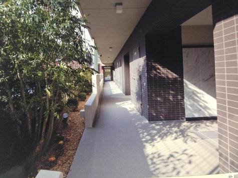 メゾンカトーレ 建物画像4