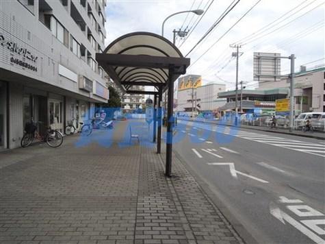 日吉ロイヤルマンション 建物画像4