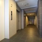 Evホール・共用廊下