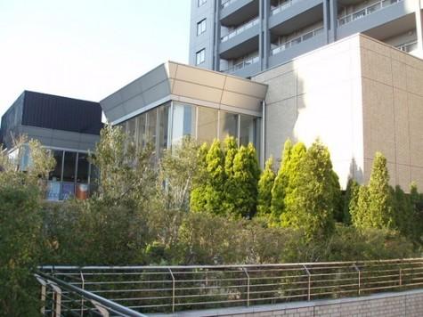 代官山アドレス・ザ・タワー 建物画像5