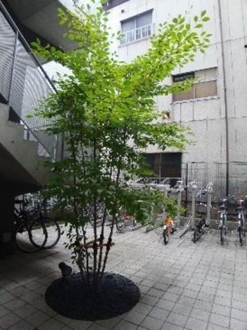 エストライフ勝どき 建物画像5