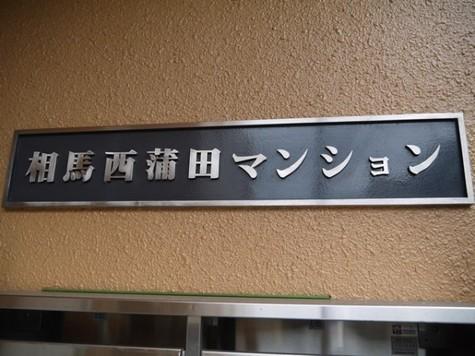 相馬西蒲田マンション 建物画像5
