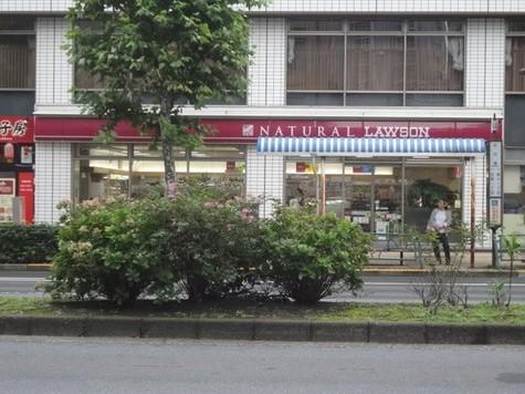 ナチュラルローソン新川一丁目店
