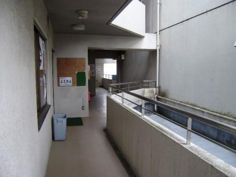 大倉山飯田ビル 建物画像5