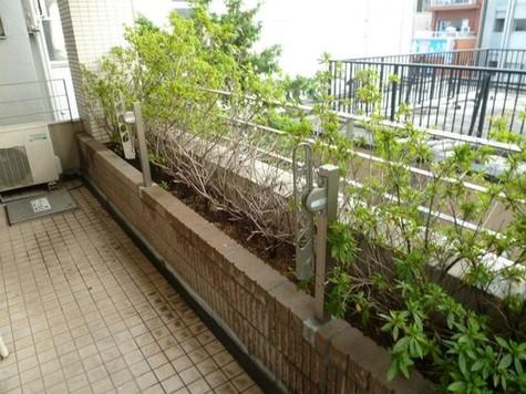ビオトープ新戸山 建物画像5