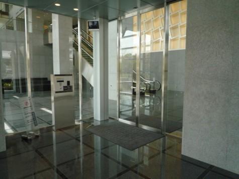 Brillia Mare有明TOWER&GARDEN(ブリリアマーレ有明) 建物画像6