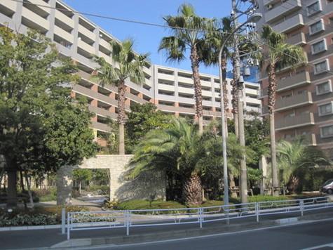 ライオンズマンションセントワーフ横濱パームコート 建物画像6