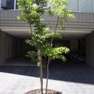 カスタリア森下Ⅱ 建物画像7