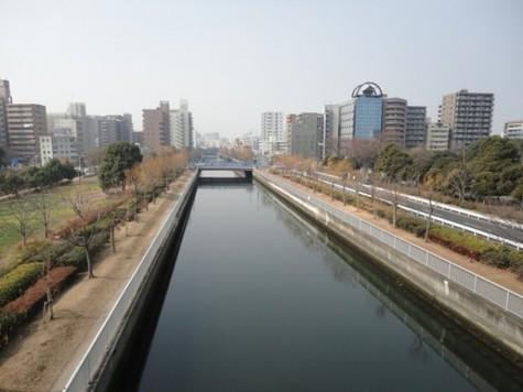 アビタシオン・木場公園 建物画像7