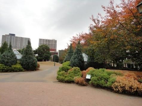 ドルチェ日本橋浜町弐番館 建物画像7