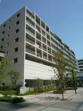 メゾン ド エルミタージュ 建物画像7