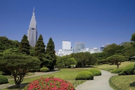 パレステュディオ新宿御苑駅前 建物画像8