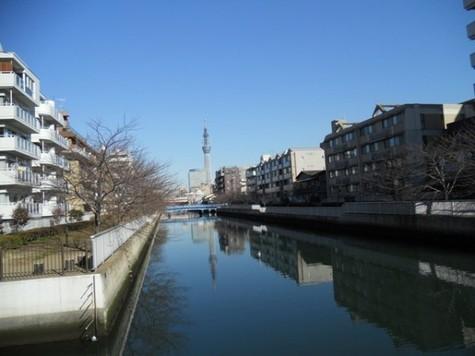 ハーモニーレジデンス東京イースト 建物画像8