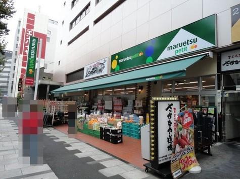 ブリリア ザ・タワー東京八重洲アヴェニュー 建物画像8