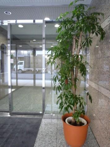 銀座レジデンス参番館 建物画像8