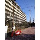 クレストフォルム武蔵小杉御殿町 建物画像8