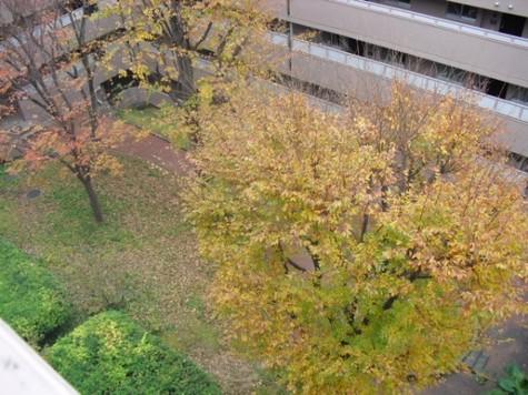 マンション第二恵比須苑 建物画像9