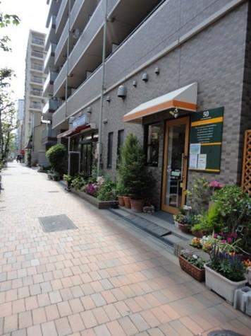 メゾン・ド・ヴィレ日本橋浜町 建物画像9