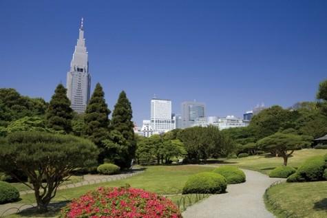 エスティメゾン東新宿 建物画像9