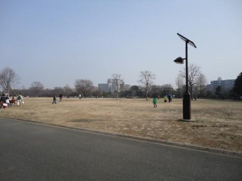 グランス木場公園 建物画像9