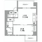 グランデュールⅡ関内 / 5階 部屋画像1