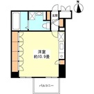 スペーシア新宿 / 405 部屋画像1