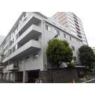 小田急麹町マンション / 8階 部屋画像1
