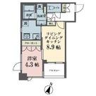 メゾンビスタ渋谷宇田川 / 503 部屋画像1