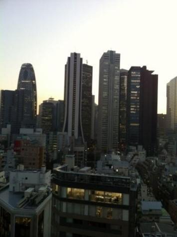 ファーストリアルタワー新宿(旧プロスペクト・アクス・ザ・タワー新宿) / 28階 部屋画像10