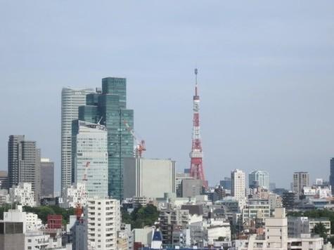 青山第一マンションズ / 12階 部屋画像10