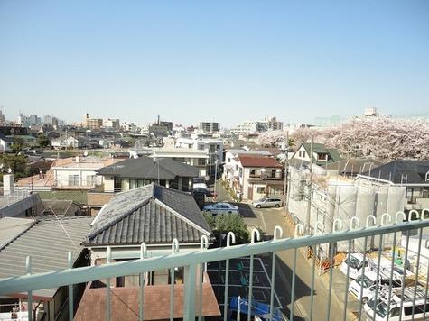 メゾン赤松 (南千束2) / 502 部屋画像10