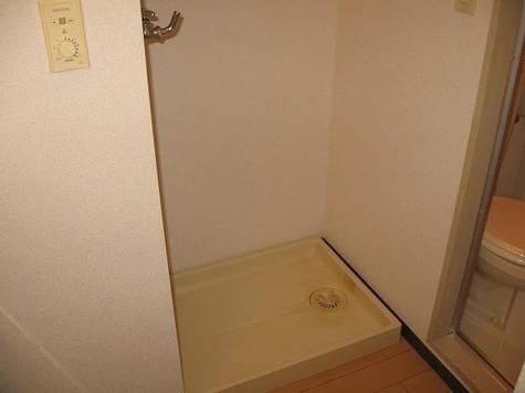 タウンハウス東麻布 / 301 部屋画像10
