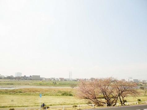 ローラル多摩川 / 107 部屋画像10