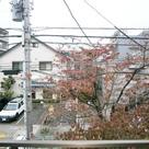 パストラル野沢壱番館 / 201 部屋画像10
