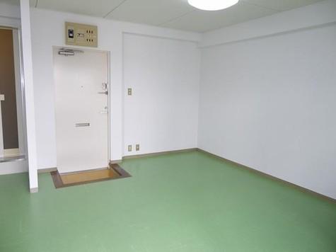 久我ハイツ / 203 部屋画像10