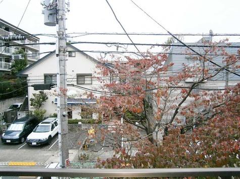 パストラル野沢壱番館 / 205 部屋画像10