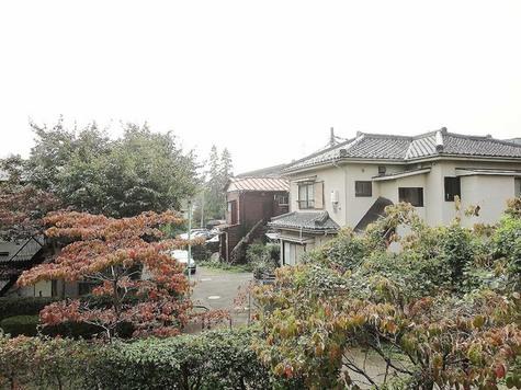 二子玉川 5分マンション / 105 部屋画像10