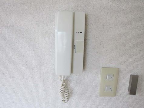 メゾン・アイル / 301 部屋画像10