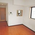 ハイネス多摩川 / 4階 部屋画像10