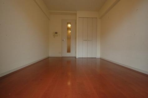 ラグジュアリーアパートメント・デュオ神楽坂 / 7階 部屋画像10