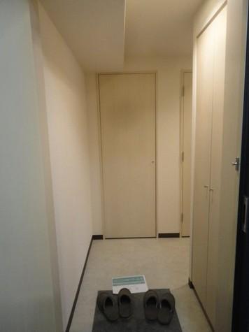 メゾン・ド・ヴィレ日本橋中洲 / 2階 部屋画像10