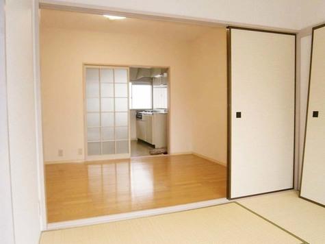 石川台 8分アパート / 203 部屋画像11