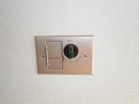田園フラワーホーム / 306 部屋画像11